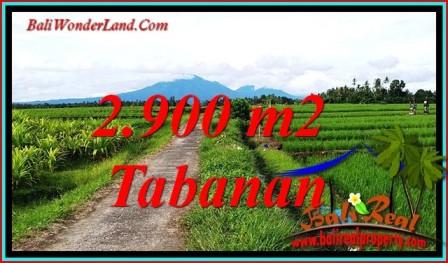 Beautiful SELEMADEG LAND FOR SALE TJTB484