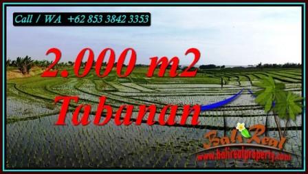 Exotic 2,000 m2 LAND FOR SALE IN KERAMBITAN TABANAN BALI TJTB493