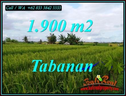 FOR SALE Beautiful 1,900 m2 LAND IN SELEMADEG TABANAN BALI TJTB495