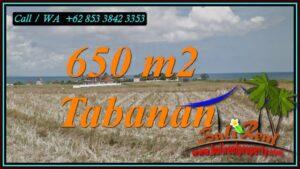 Beautiful LAND SALE IN TABANAN BALI TJTB453