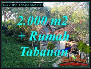 Beautiful PROPERTY 2,000 m2 LAND FOR SALE IN TABANAN TJTB455