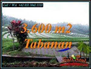 LAND IN TABANAN BALI FOR SALE TJTB461