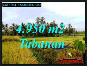 Magnificent PROPERTY 4,950 m2 LAND SALE IN TABANAN TJTB464