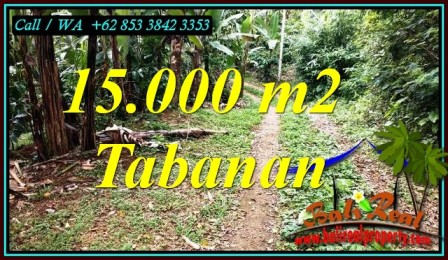Exotic PROPERTY 15,000 m2 LAND IN TABANAN FOR SALE TJTB469