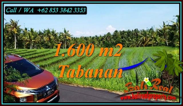 Magnificent PROPERTY TABANAN 1,600 m2 LAND FOR SALE TJTB471