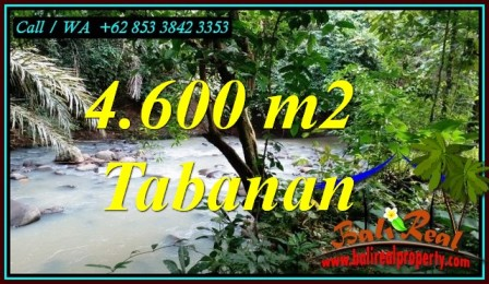 Magnificent PROPERTY 4,600 m2 LAND IN TABANAN FOR SALE TJTB473