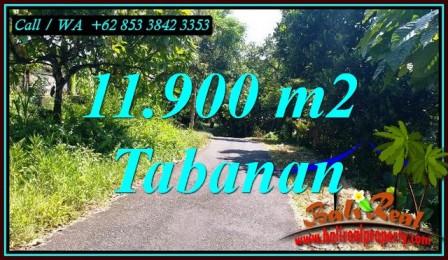 Magnificent PROPERTY SELEMADEG BARAT LAND FOR SALE TJTB474
