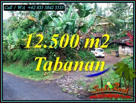 Beautiful 12,000 m2 LAND IN TABANAN FOR SALE TJTB475