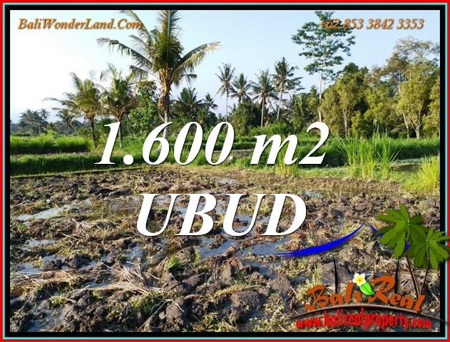 Beautiful LAND SALE in UBUD BALI TJUB807