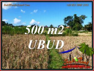 FOR SALE Beautiful LAND in UBUD BALI TJUB810