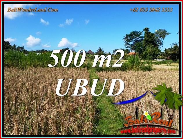 Magnificent LAND SALE in UBUD BALI TJUB810