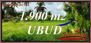 Affordable PROPERTY LAND in Tampaksiring for SALE TJUB811