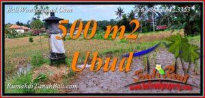 FOR SALE Beautiful PROPERTY 500 m2 LAND in UBUD TJUB812