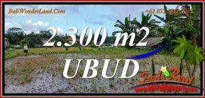 LAND in UBUD BALI for SALE TJUB813