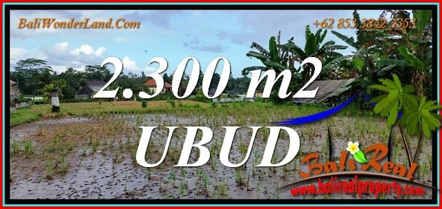 Beautiful PROPERTY 2,300 m2 LAND in UBUD for SALE TJUB813